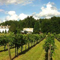 Stonefield Cellars Wine Tasting &amp Food Pairing
