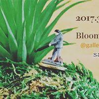 324() Bloombruna  salon de mahalo