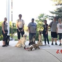 SD Dogs Pack Walk