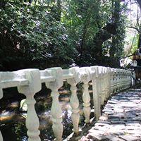 Tour Tijuca - Entre Rios e Histrias