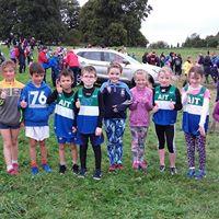 Westmeath Indoor Championships