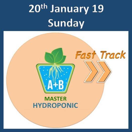 FastTrack Master Hydroponic