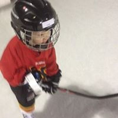 Morgan Hockey Development