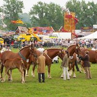 The 178th Hadleigh Show