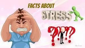 Life Stress Management - Fact or Myth