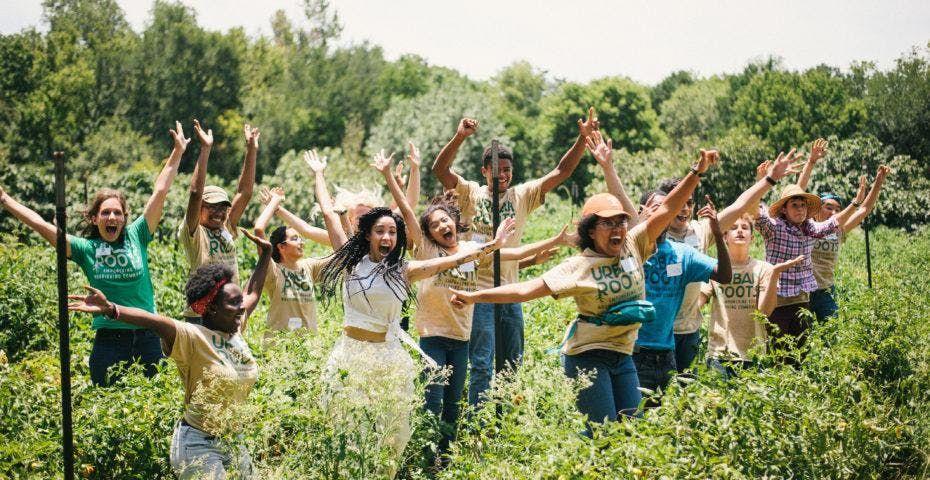Urban Roots Volunteer Thursday