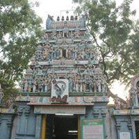 Concert at Arulmigu Mundagakanniamman TempleMylapore