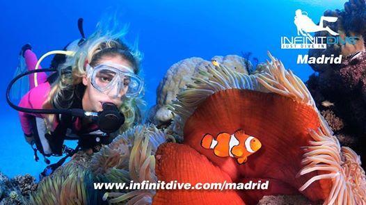 Curso de buceo Madrid - PADI Open Water Diver