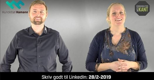 Workshop Skriv godt til LinkedIn