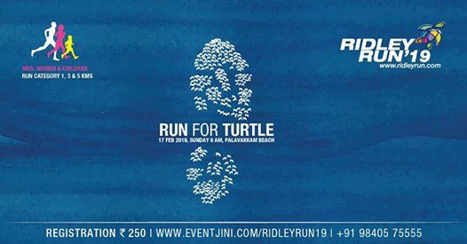 Ridley Run 19
