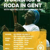 Capoeira Workshop &amp Roda in Gent