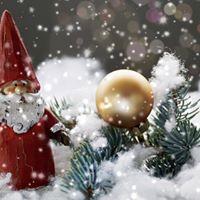 Friends of Weston Hospicecare Christmas Fair