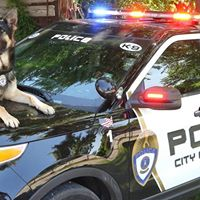 2nd Annual Portage Police K9 Golf Outing