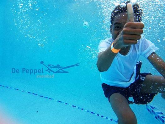 Zwembad De Peppel : Snelcursus zwemdiploma b at zwembad de peppel edepeppelensteeg