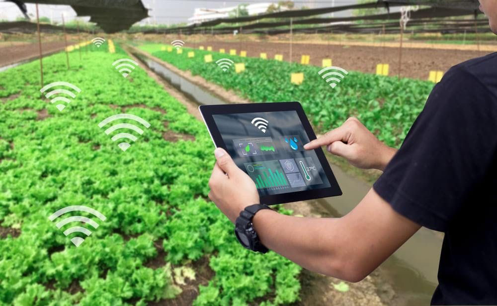Develop a Successful Smart Farming 2.0 Tech Startup Business Bristol - Entrepreneur Workshop - Bootcamp - Virtual Class - Seminar - Training - Lecture - Webinar - Conference