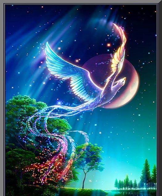 Llek-Csillag energetika Szmok s sznek j minsgben