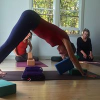 Intro to Yoga 4 Week Course with Alana Mitnick