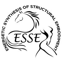 ESSE Energetic Synthesis of Structural Embodiment