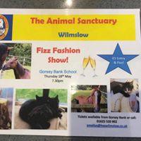 Fizz Fashion Show