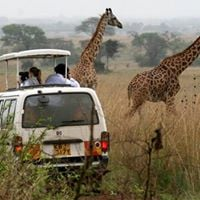 3 Days Tsavo East and West joining safari from Mombasa