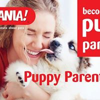 New Puppy Parent Class Wexford