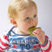 Introducing Solids with Anthea Brand