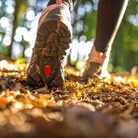 November Hike
