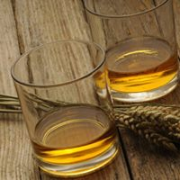 Introduction to Whiskey Tasting Experience