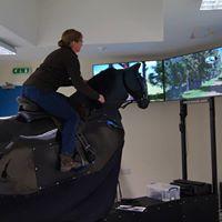 Rest Harrow Rider Analysis Sessions (eventing simulator)