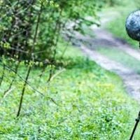 Field Recording with Kelsey Braun