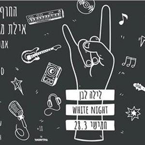 283 White Night