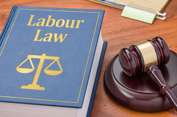 UAE Labor Law Training in TransformEd Dubai