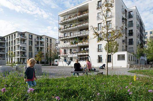 Collectief bouwen en wonen in Vlaanderen