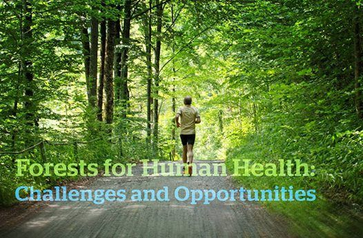 Workshop Forests for Human Health  Challenges and Opportunities