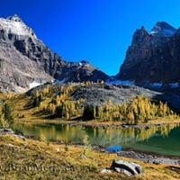 The 2017 Lake OHara All Inclusive Landscape Photography Tour