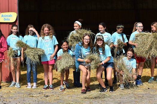 Service Learning Saturday at Lollypop Farm, the Humane