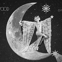 Fleetmac Wood Presents Sisters of the Moon Disco - Dublin