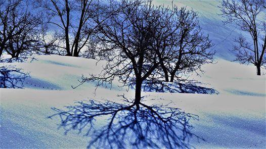Snowshoeing Laqlouq (Jbayl )