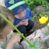 Polliwogs Preschool Program (ages 3-5)