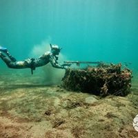 Intro to FreedivingSpearfishing