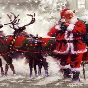 Santa At Belfairs