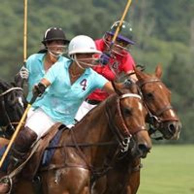 Polo for the Cure