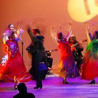 Flamenco Quadro in the Garden