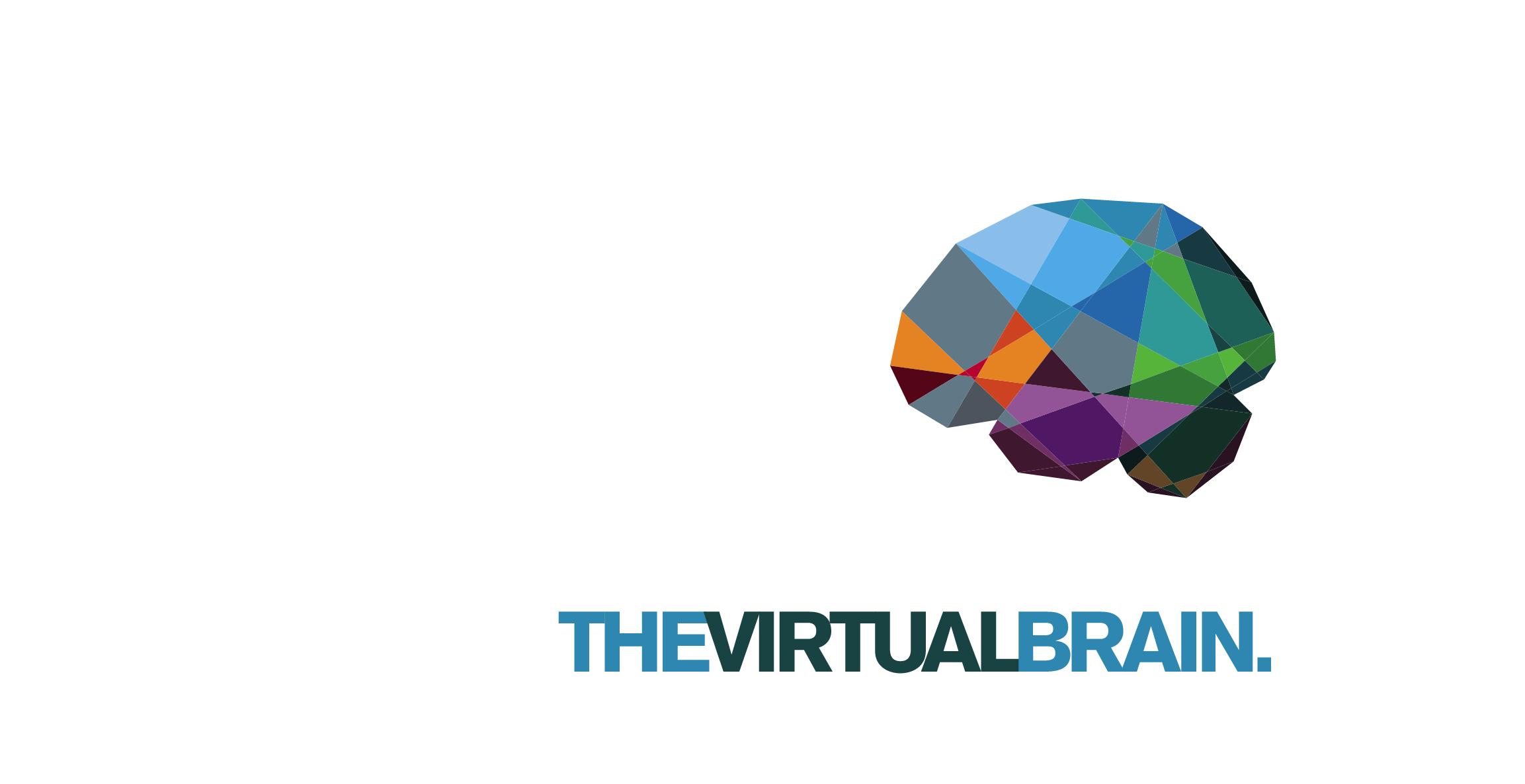 The Virtual Brain NODE7 Workshop