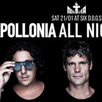 Perestroika Apollonia All Night Long at six dogs