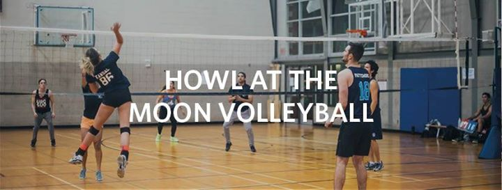 Howl at the Moon Volleyball