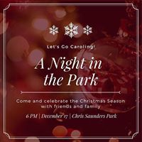 A Night in the Park