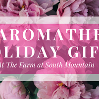 DIY Holiday Gifts - Aromatherapy