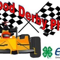 Pinewood Derby Physics Day