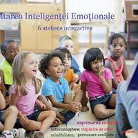 Program Dezvoltarea inteligentei emotionale